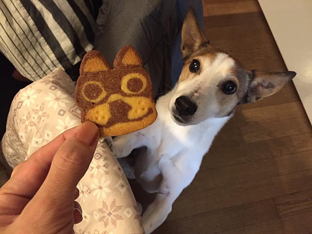 ボノクッキー